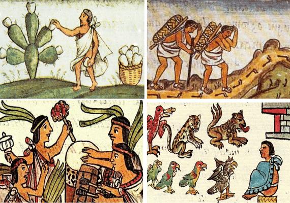 Ilustración representativa con las distintas actividades de los mixtecos